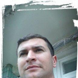 Макс, 33 года, Лиман