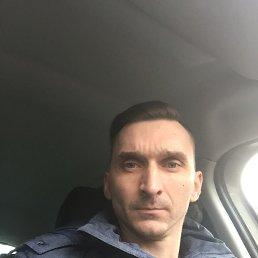 Миша, 40 лет, Дедовск