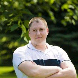 Алекс, 35 лет, Павлоград