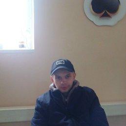 Алексей, 24 года, Ярцево