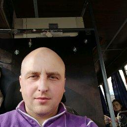 Владимир, 36 лет, Шостка