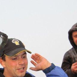 Станислав, 41 год, Тольятти