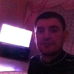Ади, 34 года, Ватутинки