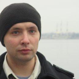 Максим, 29 лет, Невель