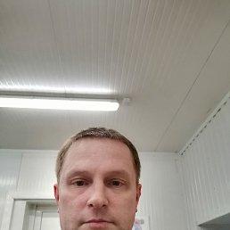 Илья, 39 лет, Сертолово