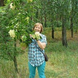 Людмила, 65 лет, Алчевск