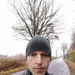 Андрей, 29 лет, Калининград