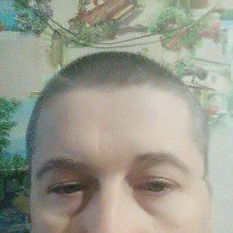 Андрей, 37 лет, Чайковский