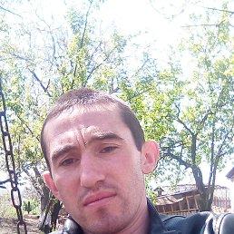 Михайло, 26 лет, Бровары