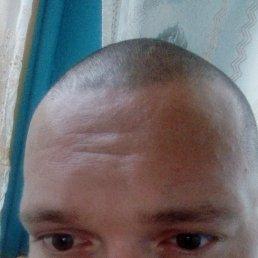 Фото Павел, Шемонаиха, 36 лет - добавлено 12 августа 2020