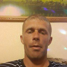 Владимир, 32 года, Ростов-на-Дону