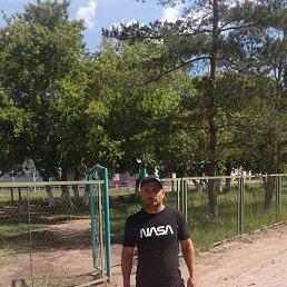 Михаил, 34 года, Киев