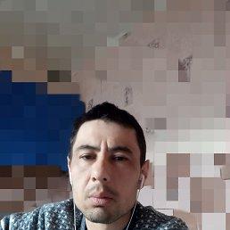 Шер, 30 лет, Хабаровск