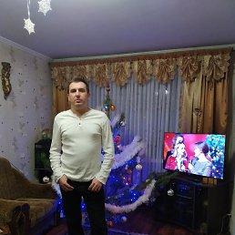 Роман, 33 года, Шостка