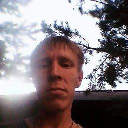 Илья, 36 лет, Звенигово