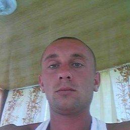 Денис, 29 лет, Киев