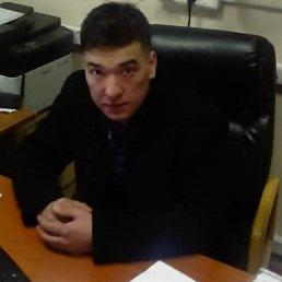 Руслан, 28 лет, Тамбов