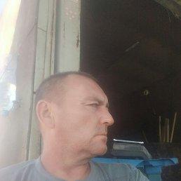 Сергей, 49 лет, Воронеж