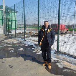 Василий, 43 года, Беляевка