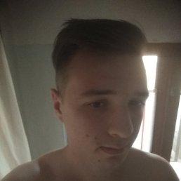Денис, 21 год, Виноградов