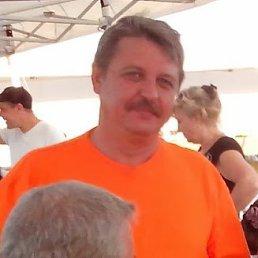 Сергей, 58 лет, Воронеж