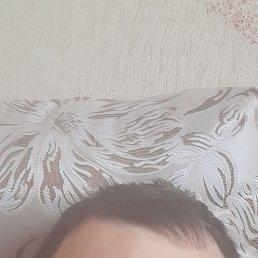 Дима, 28 лет, Бийск