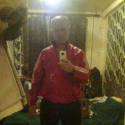 Виктор, 53 года, Зеленогорск