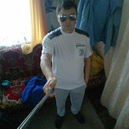 Алекс, 29 лет, Уфа