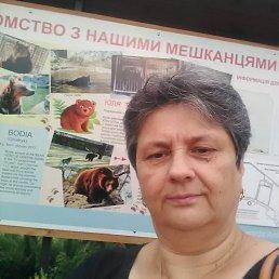 Валентина, 62 года, Ровно