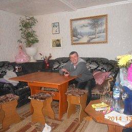 Фото Александр, Плавица, 42 года - добавлено 26 мая 2020