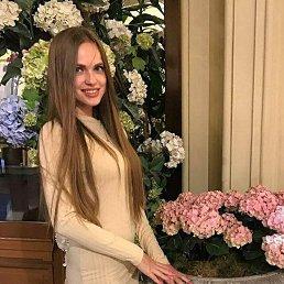 Алиса, 20 лет, Архангельск