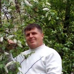 Игорь, 45 лет, Володарск-Волынский