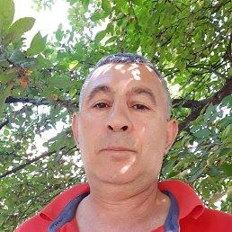 Milosh, 47 лет, Тверь