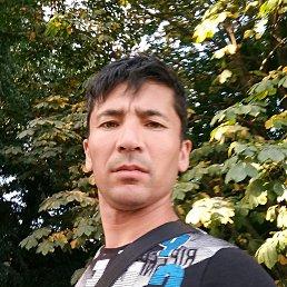 Мурат, 37 лет, Видное