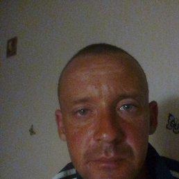 Дима, 34 года, Ростов-на-Дону