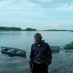 Николай, 61 год, Ростов-на-Дону