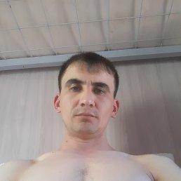 Федя, 28 лет, Владивосток