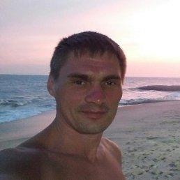 Сергей, 39 лет, Полтава