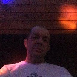 Анатолий, 46 лет, Плавск