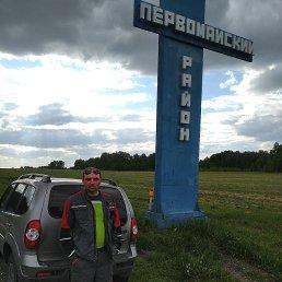 Николай, 35 лет, Новосибирск
