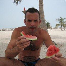 Виктор, 53 года, Ярославль
