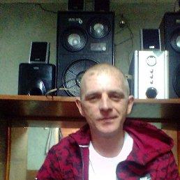 Алексей, 35 лет, Кемерово