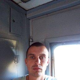 Александр, 28 лет, Приморск