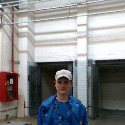 Александр, 30 лет, Киров