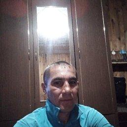 Игорь, 36 лет, Сурское