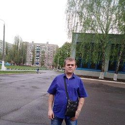 Евгений, 37 лет, Курск