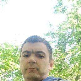 Идрис, 33 года, Челябинск