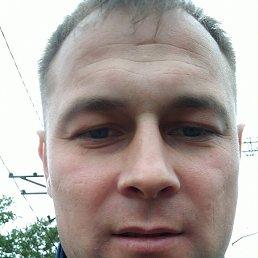 Дима, 34 года, Монино