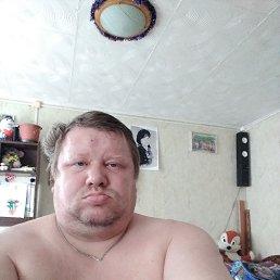 Ал, 40 лет, Дмитров