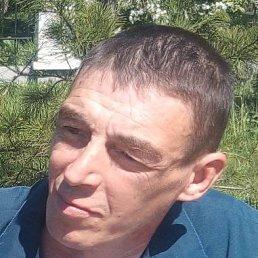 Василий, 44 года, Новокузнецк